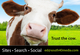 Sites Search Social: 615 406 3255